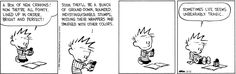 Calvin and Hobbes strip for March 12, 2015