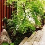 外構施工例 Japanese Garden Style, Garden Styles, Wood, Plants, Woodwind Instrument, Timber Wood, Trees, Plant, Planets
