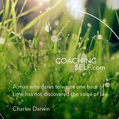A man who dares to waste one hour of time has not discovered the value of life-Charles Darwin Online Self, Positive People, Charles Darwin, News Online, Self Development, Dares, Coaching, Positivity, Life