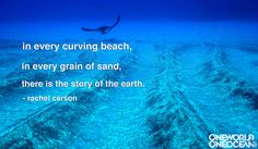 Every hero has a hero. Sylvia Earle's? You guessed it -- Rachel Carson.    Who inspires you?