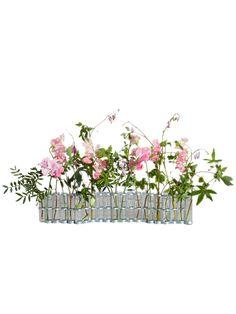 H.P.DECO |Tse&Tse associees |4月の花器 S|フラワーベース|H.P.F,MALL(えいちぴーえふもーる)|H.P.F, MALL