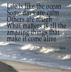 Life is like the ocean. Some days are calm, others are rough.  What matters is all the amazing things that make it come alive.~ Sara