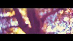 Blurry Eyes - Teaser on Vimeo