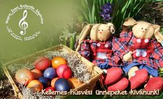 Kellemes húsvéti ünnepeket kívánunk! #husvet #easter #happines #happy #boldog #kellemeshúsvétiünnepeket #alapitvany #magyar #zenei #magyarzeneikultura