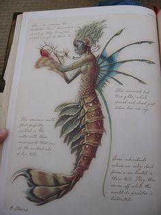 Caribbean Mermaid  for @Emilio Facade