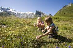 Summer | Hiking Paradise | Hintertux Glacier Nice View, Climbing, Paradise, Hiking, Mountains, Nature, Summer, Travel, Walks