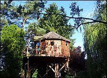 Slapen in een boomhut in België