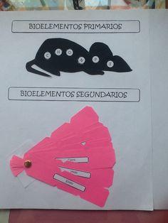 Bioelementos primarios y secundarios: http://www.pinterest.com/julissa87/teaching-biology-biolog%C3%ADa-1-bachillerato/