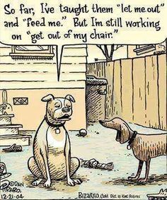 ''So far I've taught them ''let me out'' and ''feed me''. Are we training dogs, or are they training us? #Funnydog #DogTraining