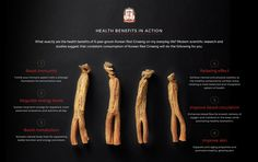 Where to buy the best Korean red ginseng online? Korean Ginseng Corp is the world's no. 1 Korean ginseng brand that offers premium red ginseng extract. Korean Red Ginseng Benefits, Korean Ginseng, Reduce Blood Sugar, Reduce Cholesterol, Medicinal Plants, Mental Health Awareness, How To Increase Energy, Health Benefits, Health Foods