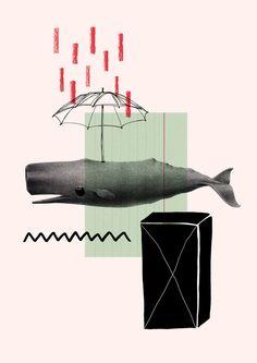 whale — Designspiration