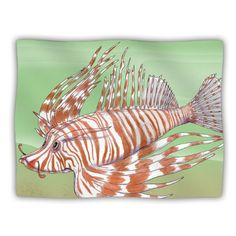 Kess InHouse Catherine Holcombe Fish Manchu Pet Blanket 40 by 30Inch >>> Want additional info? Click on the image.