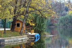 Imagini pentru toamna in bucuresti Bucharest, Cabin, House Styles, Plants, Home Decor, Decoration Home, Room Decor, Cottage, Planters