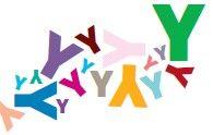 La révolution Y ? Une enquête internationale sur la génération Y réalisée par Mazars et Women Up