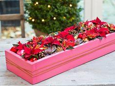 Centro navideño con Poinsettias rojas