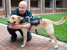 What if humans and dogs could better understand each other? Service dogs, rescue dogs, police dogs, even our pets: it opens up a much wider range of possibilities for working together. Now there's a wearable device for dogs is designed to allow two-way communication between canine and human.