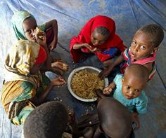 Malnutrition contributes to 45 percent of childhood deaths worldwide. #healthcare #agriculture #nutrition #foodwaste www.mesasostenible.com/blog/2016/11/14/what-is-permaculture