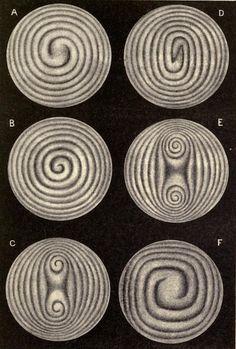Spiral figures. Light. 1892.