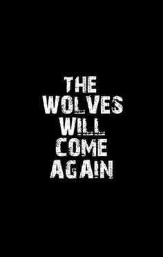 {Wolves were kicked out of New Orleans for a century and they have just returned to reclaim their thrones to see that it has been taken by anther}