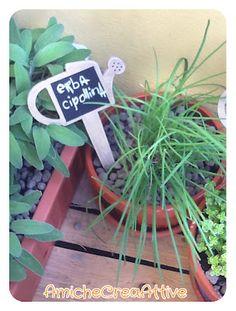 pot herbs, gardening