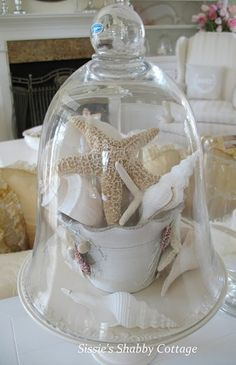 cottage Shells and teacup under cloche: Capture a bit of summer under a cloche or glass bell jar. Explore these beautifully chic coastal cloche decor ideas for your home. Beach Cottage Decor, Coastal Cottage, Shabby Cottage, Coastal Decor, Coastal Living, Shabby Bedroom, Coastal Furniture, Cloche Decor, Do It Yourself Decoration