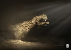Panther - Desertification Disintegrates Animals - WWF Publicity Campaign