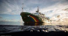 Bordeaux : L'Esperanza, navire mythique de Greenpeace, pour la première fois en visite