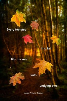 Autumn Quotes on Beautiful Pictures that will Enchant & Deepen your Soul 16 soulful autumn quotes featured on beautiful fall pictures to reflect the wisdom and loveliness of nature's middle-aged season. Deep Autumn, Autumn Cozy, Autumn Fall, Leaf Quotes, Nature Quotes, Fall Quotes, Fall Weather Quotes, Fall Season Quotes, Fall Poems