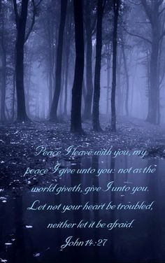 Peace I leave with you, my peace I give unto you: not as the world giveth, give I unto you. Let not your heart be troubled, neither let it be afraid. John 14:27 KJV