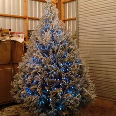 images-of-decorated-christmas-trees