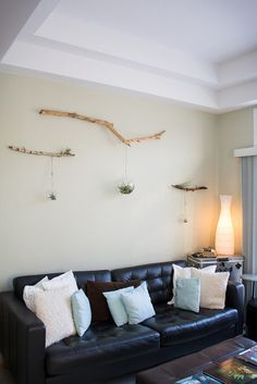 Justice & Ronan's Cozy Eclectic Abode Airplants! From Apartment Therapy Hanging Air Plants, Hanging Planters, Plants Indoor, Hanging Terrarium, Cozy Apartment, Apartment Therapy, Branch Decor, Wall Decor, Wall Art