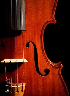 'VIOLIN' ONE OF MY FAVORITE MUSIC INSTRUMENTS....