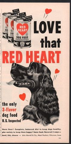 1951 Hungry Happy COCKER SPANIEL Love that Red Heart Dog Food AD