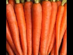 Want to grow your own organic food? Order your seeds here today by visiting the website! Growing Carrots From Seed, Growing Vegetables In Pots, Planting Vegetables, Growing Plants, Vegetable Garden Planner, Backyard Vegetable Gardens, Front Flower Beds, Landscaping Tools, Garden Care