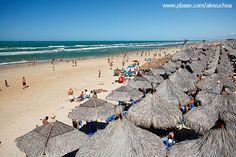 Barraca Crocobeach, Praia do Futuro, Fortaleza, Ceará