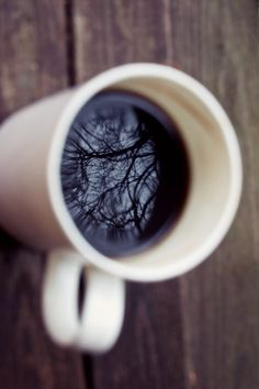 Coffee and trees two of my favorites _ Makes me Happy