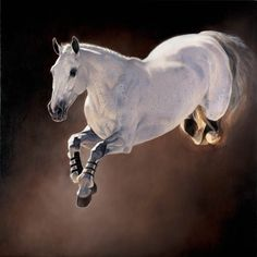 Wow! What a shot! Awesome horse photography, horse jump, white horse, amazing beauty, magnificent horse! by Jaime Corum . Please also visit www.JustForYouPropheticArt.com for colorful inspirational Art and stories. Thank you so much! Blessings!