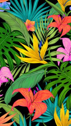 'Tropical Monstera, Fern Floral Pattern ' iPhone Case by PrettyLovely Iphone Wallpaper Tropical, Summer Wallpaper, Pastel Wallpaper, Wallpaper Iphone Cute, Cellphone Wallpaper, Flower Wallpaper, Tropical Flowers, Colorful Flowers, Image Deco