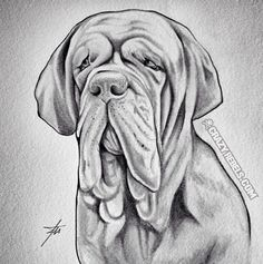 In loving memory of lovable Ruger!! #neopolitanmastiff #mastiff #dogportrait #memorial #memorialportrait #crazyrebels