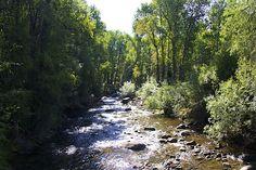 LIVE and LEARN: John Denver Sanctuary, Aspen, CO - Our World