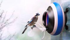 Nids d'oiseaux imprimés en 3D