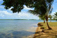 Plage de Babin à Vieux - Bourg morne-à-l'eau. Guadeloupe