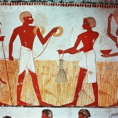 Detail of wall painting at Tomb of Menna depicting agricultural scenes