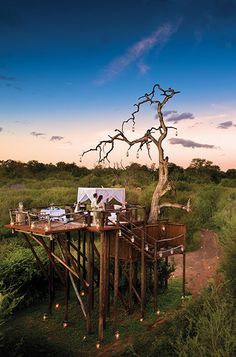 The Chalkley Treehouse at sunset