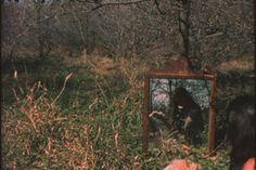 "Ana Mendieta, ""Mirage 1,"" 1974. Super-8 colour, silent film transferred to DVD…"