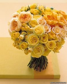 RP: SUNSHINE YELLOW Roses - garden cabbage roses, miniature spray roses, and hybrid roses