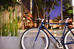 Blue single and fixed gear bike by Pure Fix Cycles