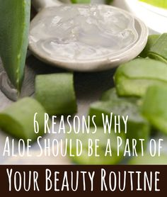 6 Reasons Why Aloe Vera Should be a Part of Your Beauty Routine