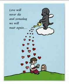 Till we meet again. True love never dies ☺️♥️