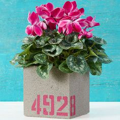 Concrete block with stenciled numbers